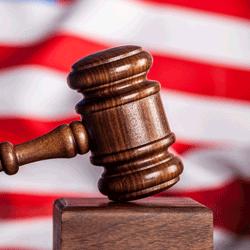 Team USA Legal